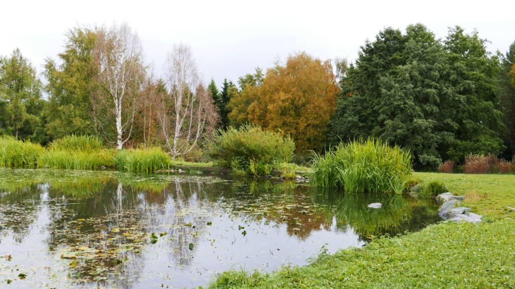 ringve botaniske hage