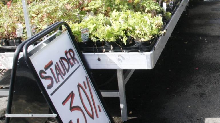 Høstplanting – ja, det går :-)